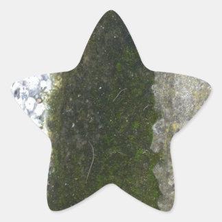 溝の屑 -- 具体的な溝が付いている粘着物 星シール