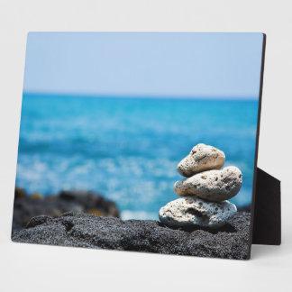 溶岩の石の珊瑚のハワイの海の熱帯ビーチのブランク フォトプラーク