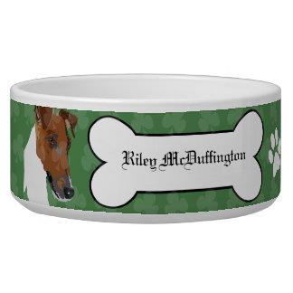 滑らかなフォックステリア犬のアイルランドの飼い犬の食糧ボール
