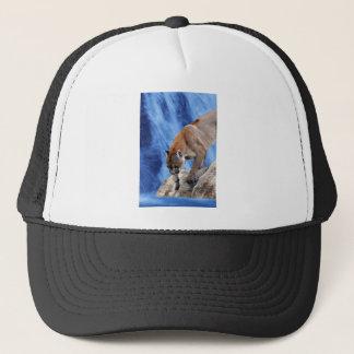 滝のオオヤマネコ キャップ
