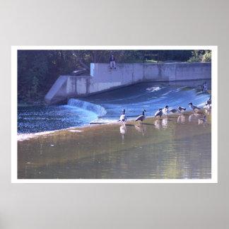 滝の写真によるガチョウ ポスター
