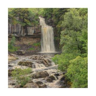 滝の景色 ウッドウォールアート