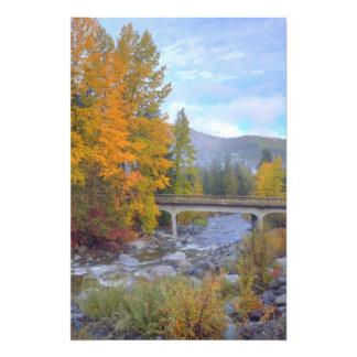 滝の森林の秋色 フォトプリント