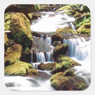 滝3の姉妹の荒野Willamette スクエアシール