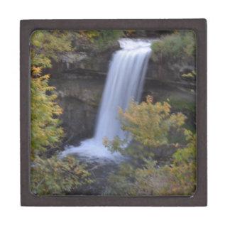 滝 ギフトボックス