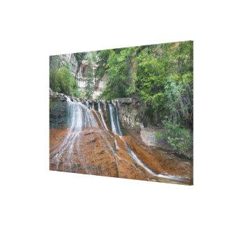 滝、ザイオン国立公園、ユタ、米国 キャンバスプリント