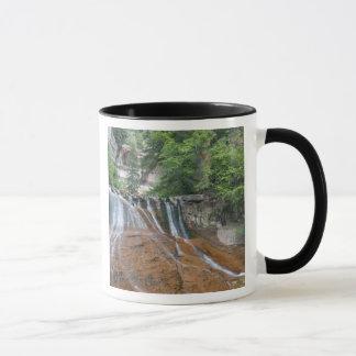 滝、ザイオン国立公園、ユタ、米国 マグカップ
