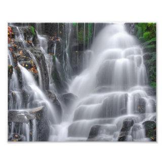 滝 フォトプリント