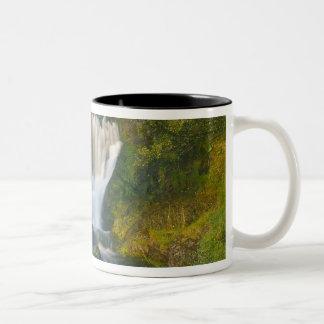 滝、Skye、スコットランドの島 ツートーンマグカップ
