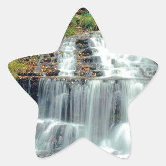 滝Wagner Alger郡ミシガン州 星シール