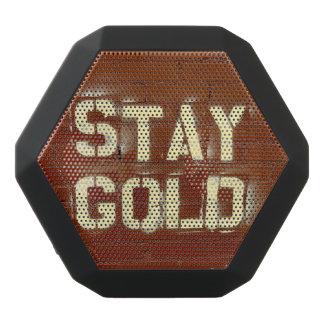 滞在の金ゴールドのスピーカー ブラックBluetoothスピーカー