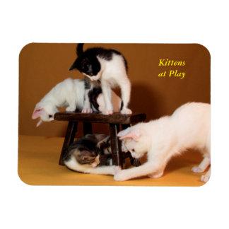 演劇の磁石の子ネコ マグネット