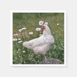 演壇を持つ鶏 スタンダードカクテルナプキン