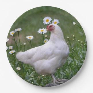 演壇を持つ鶏 ペーパープレート