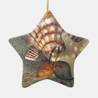 潮で持って来られる貝殻 セラミックオーナメント