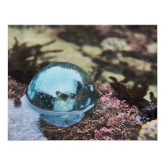 潮プールの浮遊物 ポスター