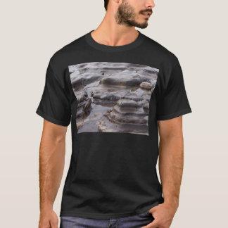 潮プール Tシャツ