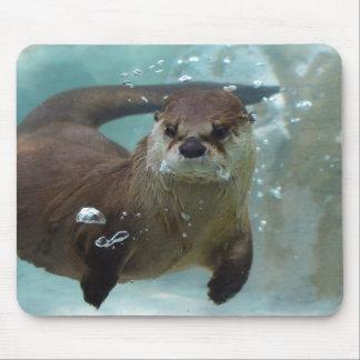 澄んで青いプールのかわいいブラウンのカワウソの水泳 マウスパッド