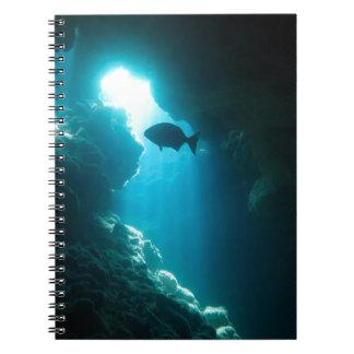 澄んで青い洞窟および魚 ノートブック