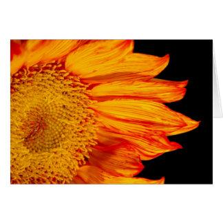 激しいオレンジヒマワリの写真 カード