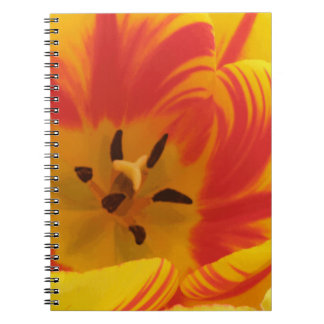 激しいチューリップのノート ノートブック