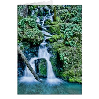 激流の入り江の滝 カード