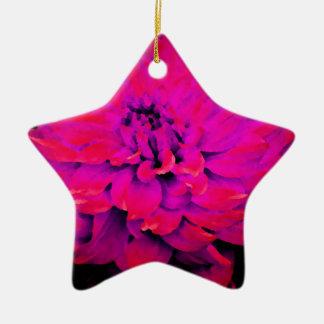 濃いピンクのダリア-新婚旅行- -赤 陶器製星型オーナメント