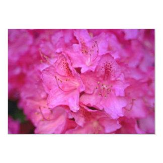 濃いピンクのツツジの集りの花 カード