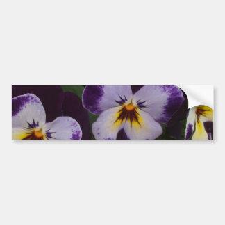 濃紫色の白いパンジー バンパーステッカー
