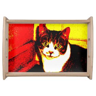 火の子猫 トレー