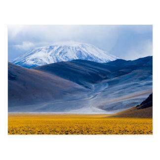 火山Incahuasi、アルゼンチン ポストカード