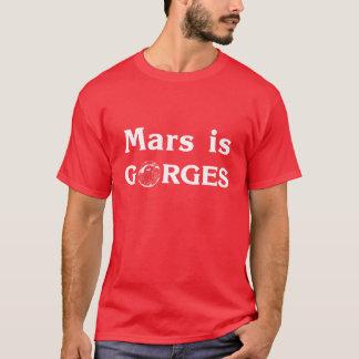 火星は峡谷です Tシャツ