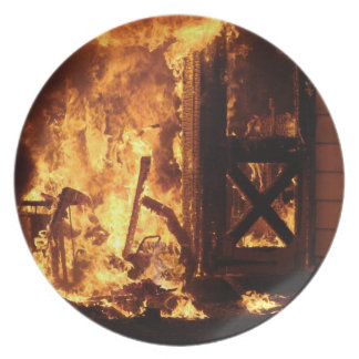 火 ディナー皿