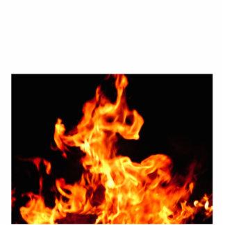火 写真彫刻バッジ