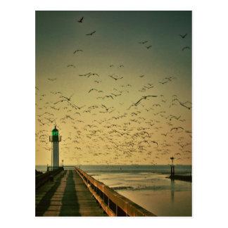 灯台およびカモメ ポストカード
