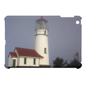灯台、岬Blancoの岬のBlancoの州立公園 iPad Miniケース