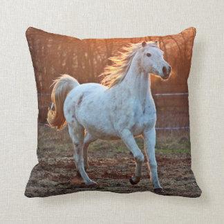 灰色のアラビアの馬 クッション