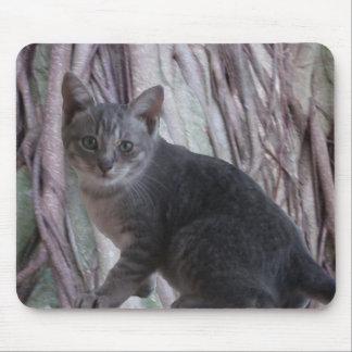 灰色の子ネコのマウスパッド マウスパッド