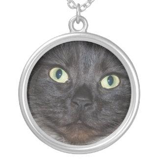 灰色の子猫 シルバープレートネックレス