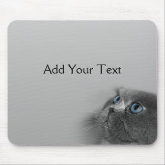 灰色の青い目を持つ灰色のペルシャ マウスパッド
