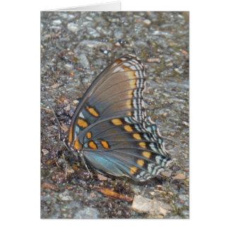 灰色の青およびオレンジ蝶迷彩柄 カード