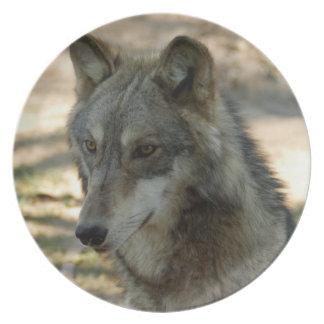 灰色オオカミ21 プレート
