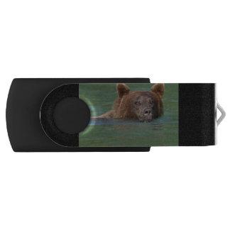 灰色グマの水泳 USBフラッシュドライブ