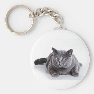 灰色猫 キーホルダー