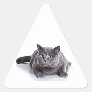 灰色猫 三角形シール