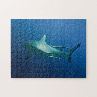 灰色礁の鮫のパズル ジグソーパズル