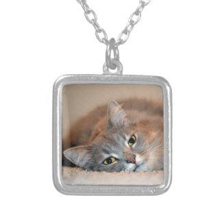 灰色、タンのShirleyテイラー著白い長い髪猫 シルバープレートネックレス