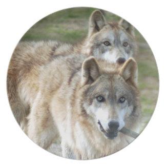 灰色wolf2 10x10 プレート