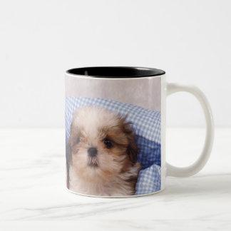 点検された毛布の下のシーズー(犬)のTzuの子犬 ツートーンマグカップ