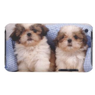 点検された毛布の下のシーズー(犬)のTzuの子犬 Case-Mate iPod Touch ケース